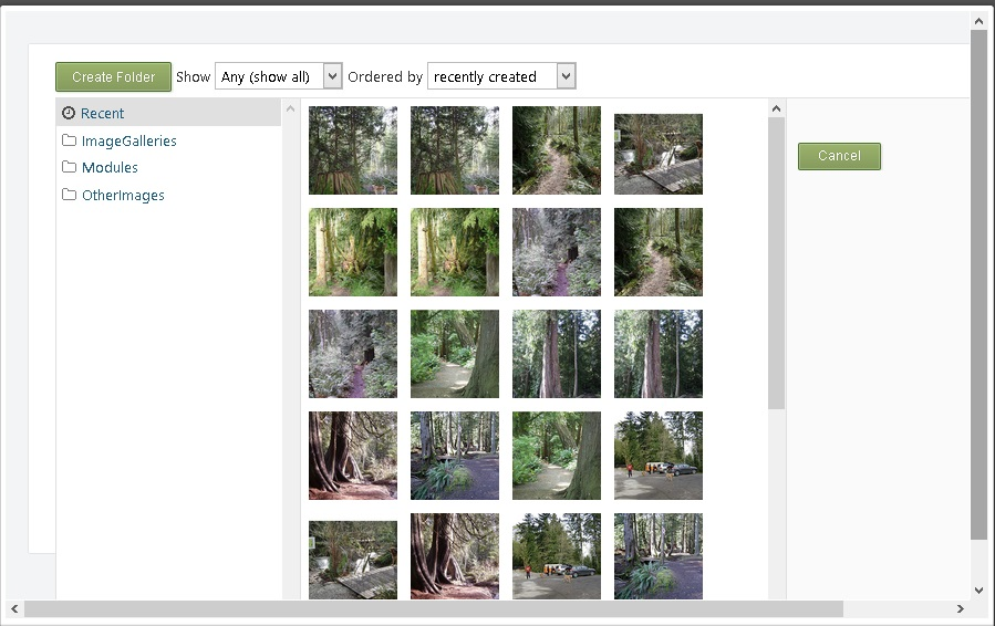how to create a pdf with popup image gallery